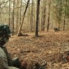 How To Get A Turkey Off Your Decoy