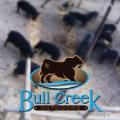 BullCreekSquare