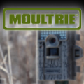 Moultrie