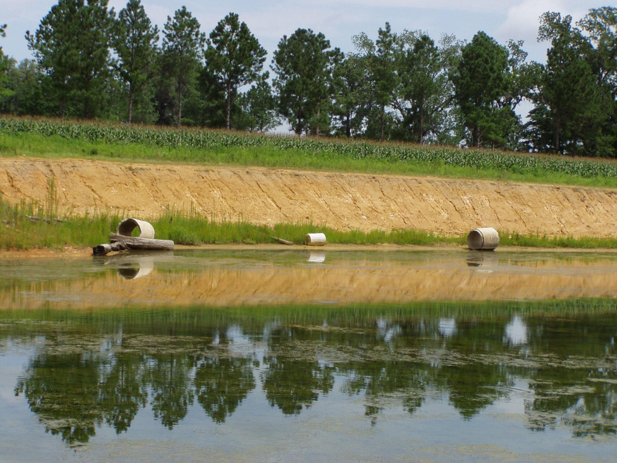 Pond Structure