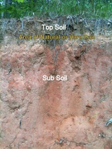 Soil Hardpan Profile