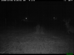 Negative Reaction to a Trail Camera