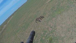 Aerial Hog Hunting