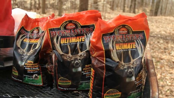 Frost Seeding Food Plots
