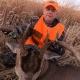 Deer Hunting Illinois
